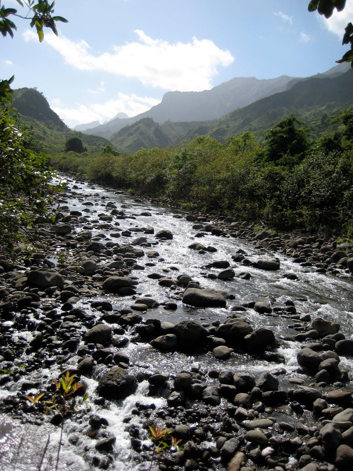 Hanalei River, Kaua'i
